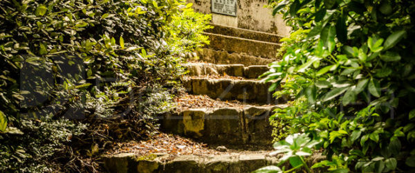 Paris Père Lachaise Cemetery – Hidden Stairs
