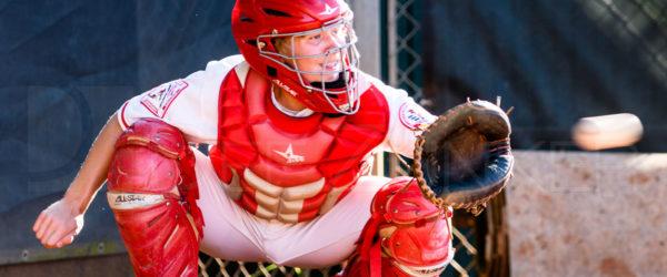 2017 Bellaire Baseball Spring