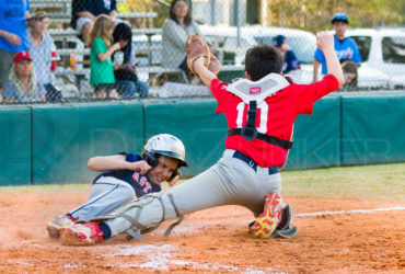 Bellaire Little League American Astros Angels 20190322
