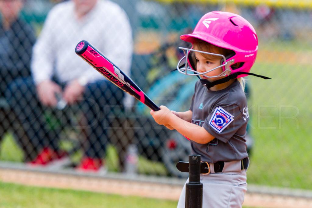 1733B-_5008708.NEF  Houston Sports Photographer Dee Zunker