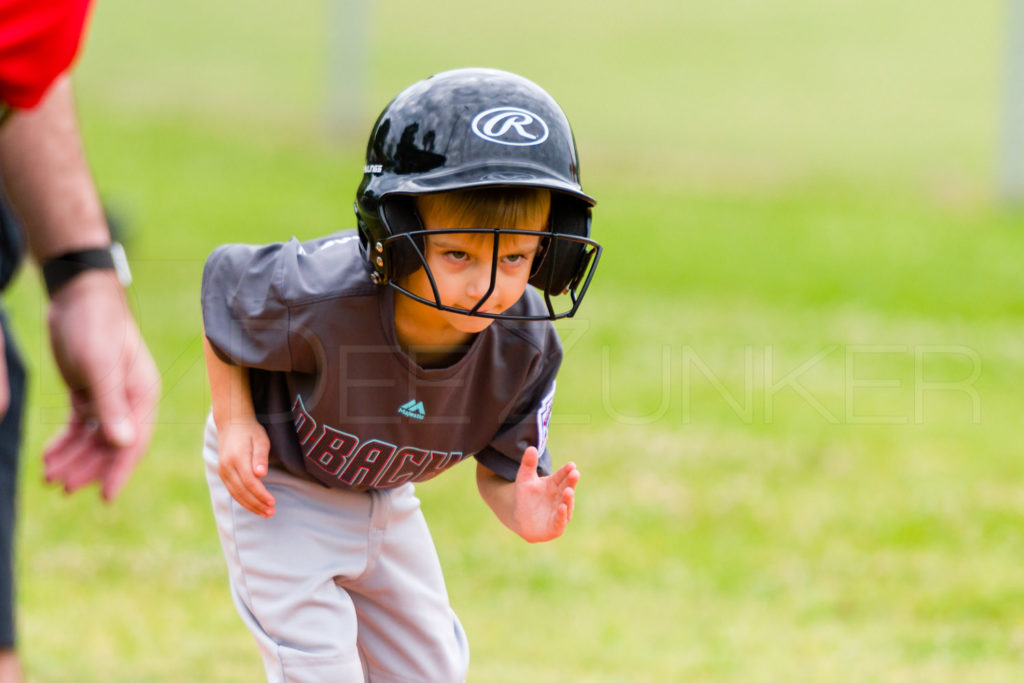 1733B-_5008740.NEF  Houston Sports Photographer Dee Zunker