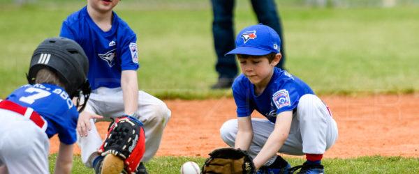 Bellaire Little League Rookies Blue Jays Yankees 20190323