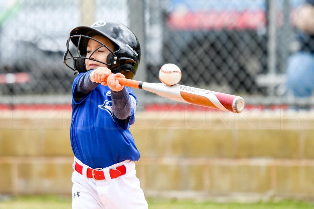 1733D-_5000154.JPG  Houston Sports Photographer Dee Zunker