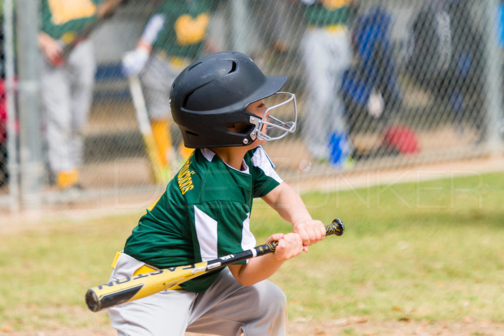 1733g_5001497.NEF  Houston Sports Photographer Dee Zunker