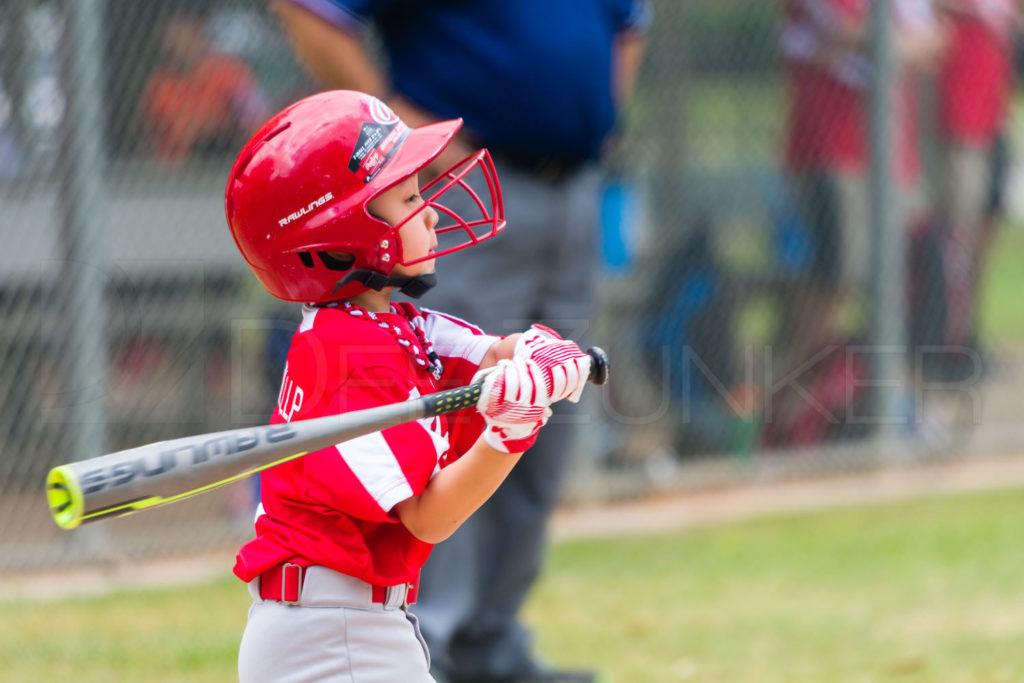1733g_5001547.NEF  Houston Sports Photographer Dee Zunker