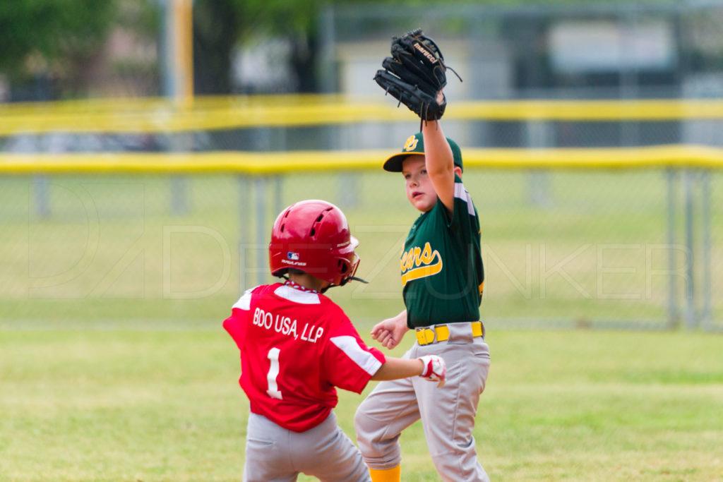 1733g_5001723.NEF  Houston Sports Photographer Dee Zunker