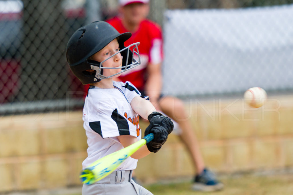 1733h_5001951.NEF  Houston Sports Photographer Dee Zunker