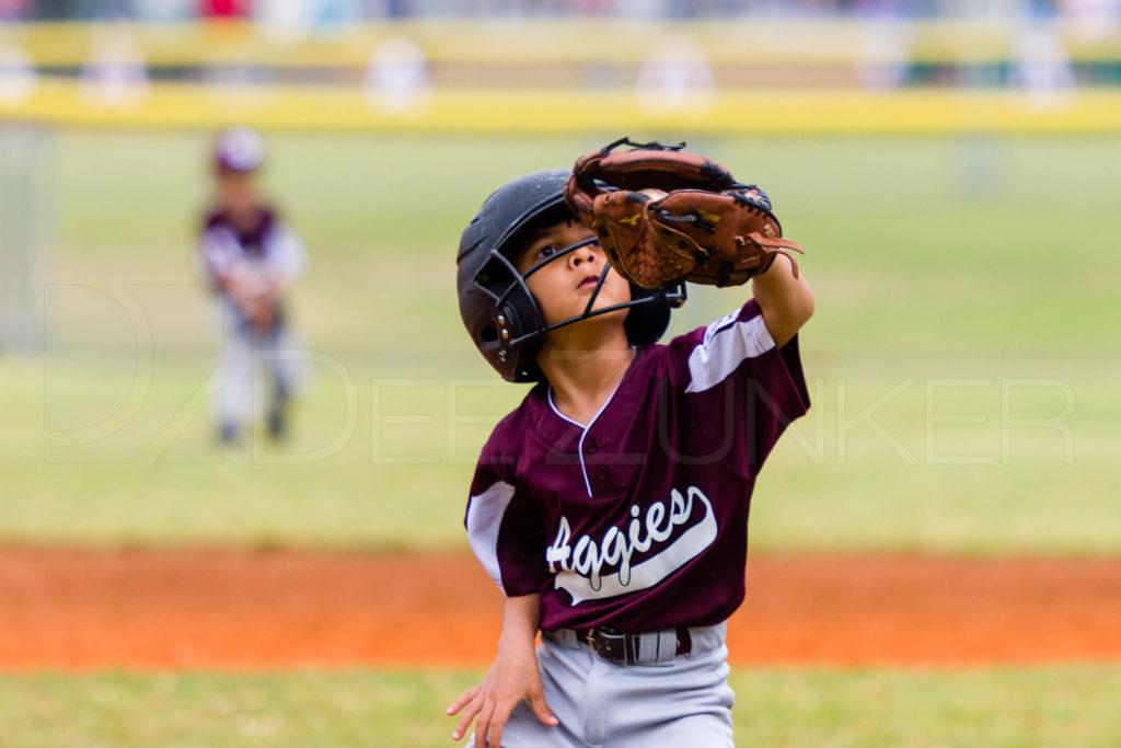 1733h_5002108.NEF  Houston Sports Photographer Dee Zunker