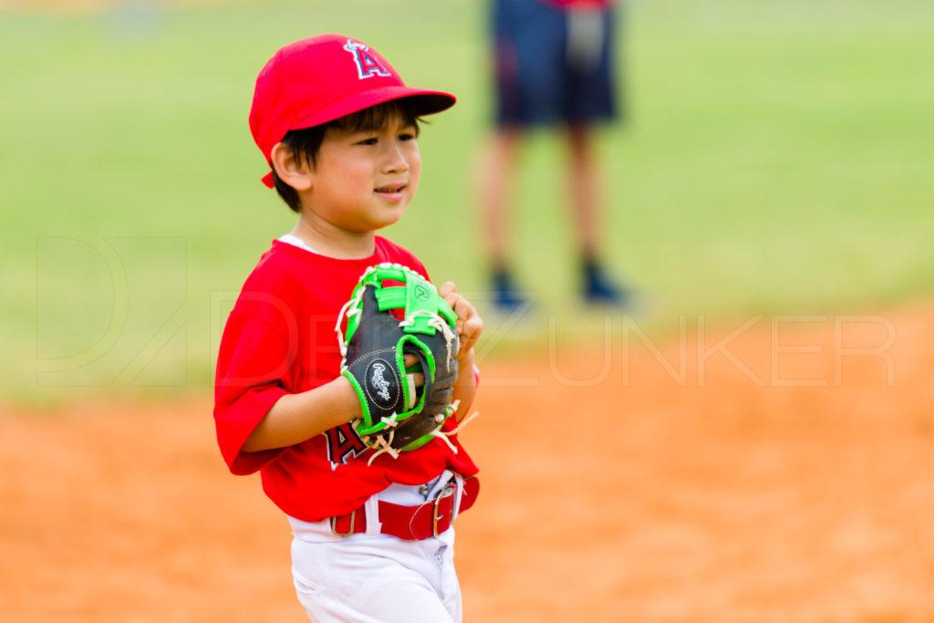 1733j_5003125.NEF  Houston Sports Photographer Dee Zunker