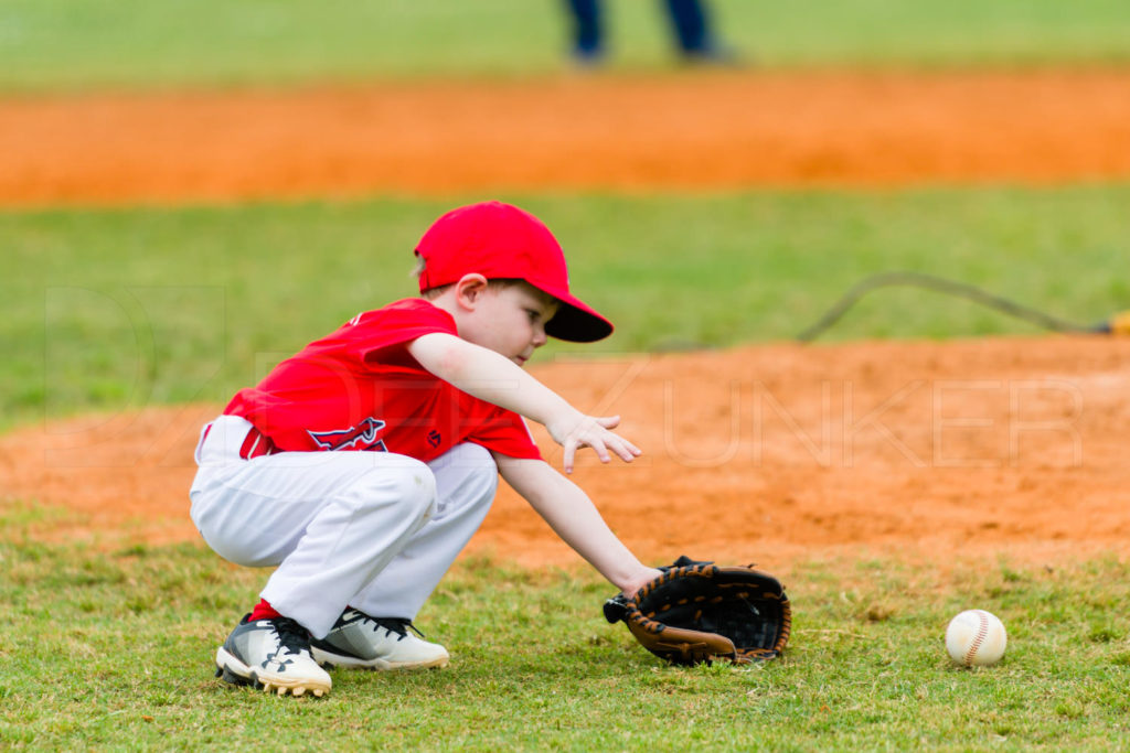 1733j_5003128.NEF  Houston Sports Photographer Dee Zunker