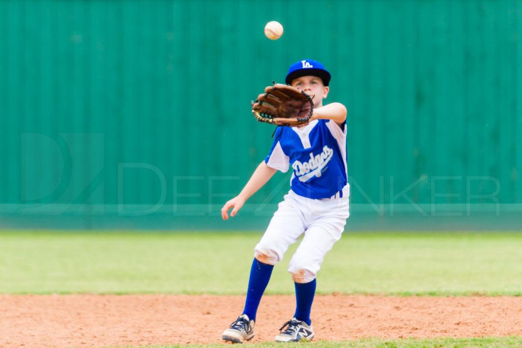 1733k_5003471.NEF  Houston Sports Photographer Dee Zunker