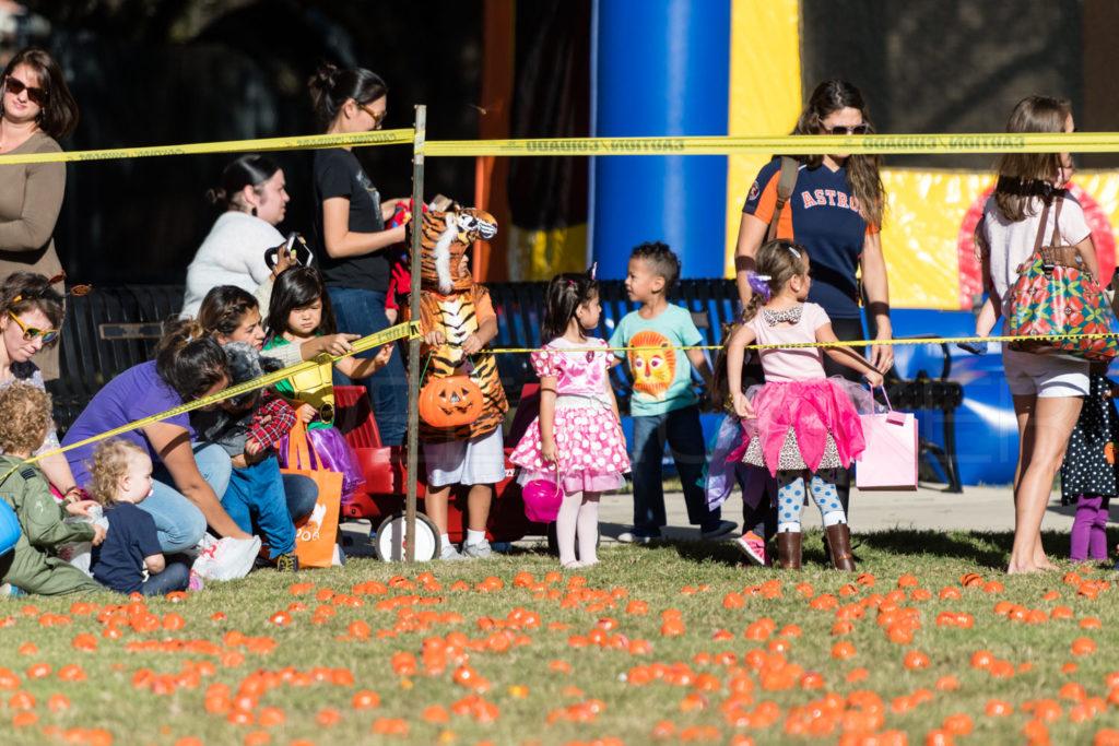 Bellaire-PumpkinHunt-20171026-019.NEF  Houston Editorial Photographer Dee Zunker