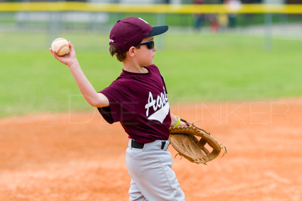 BellaireLL-20180405-Texas-Aggies-SunDevils-094.DNG  Houston Sports Photographer Dee Zunker