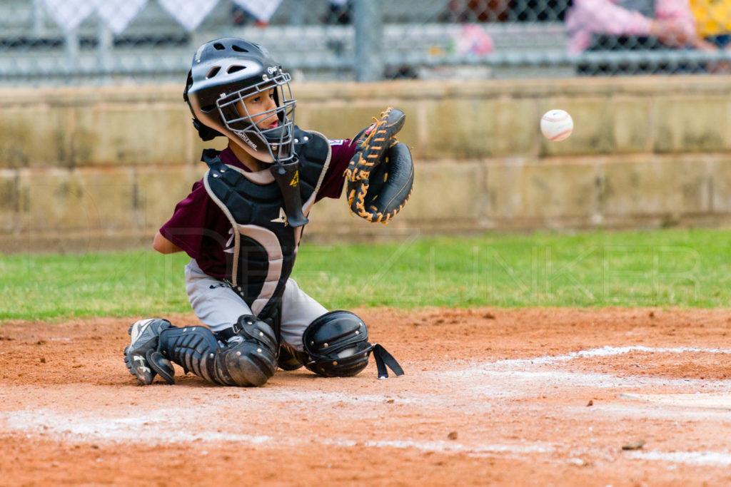 BellaireLL-20180405-Texas-Aggies-SunDevils-174.DNG  Houston Sports Photographer Dee Zunker