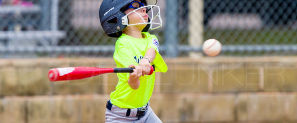 Bellaire Little League Texas Yellow Jackets Raiders 20180405