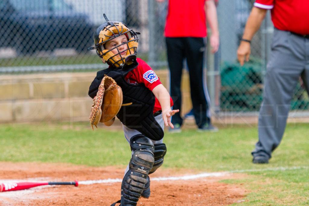 BellaireLL-20180405-Texas-YellowJackets-Raiders-029.DNG  Houston Sports Photographer Dee Zunker