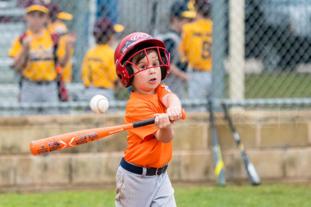BellaireLL-20180407-Rookies-Astros-Athletics-050.DNG  Houston Sports Photographer Dee Zunker