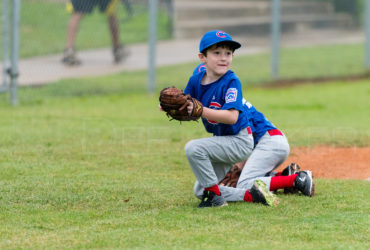 Bellaire Little League Rookies Cubs 20180407