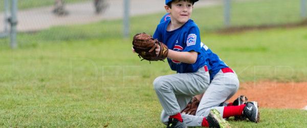 Bellaire Little League Rookies Cubs 20180407