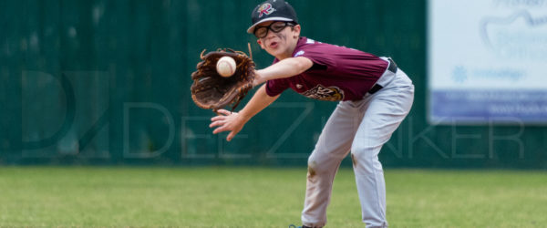 Bellaire Little League Minors Rattlers Knights 20180412