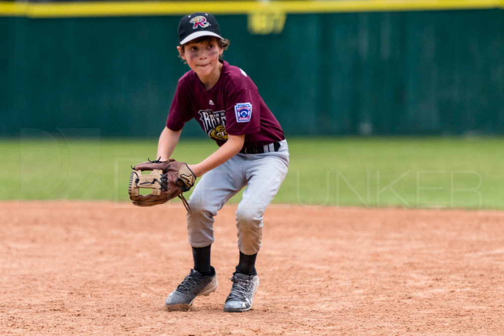 BellaireLL-20180412-Minors-Rattlers-Knights-173.DNG  Houston Sports Photographer Dee Zunker