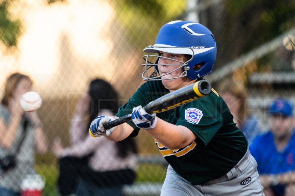 BellaireLL-Majors-Cubs-Athletics-20170419-129.dng  Houston Sports Photographer Dee Zunker