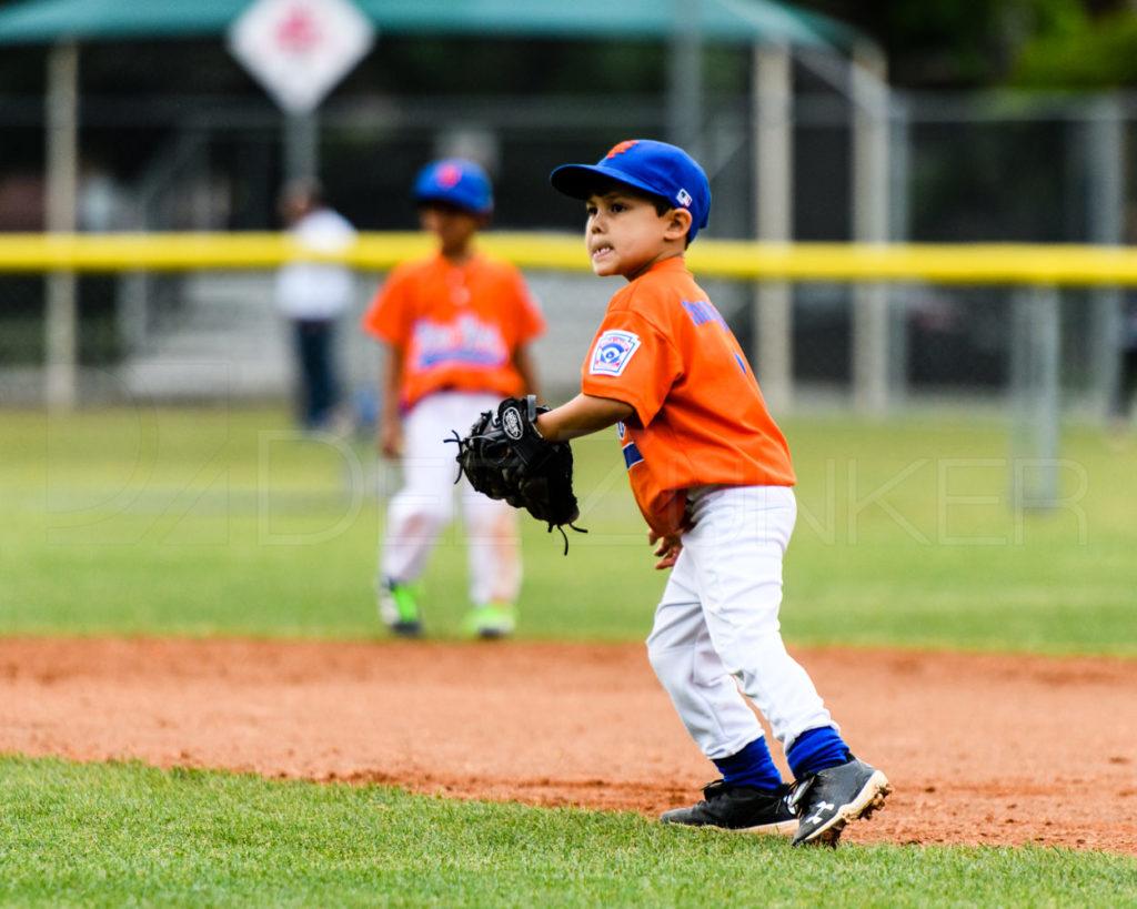 BLL-Rookies-Yankees-RedSox-20170412-054.dng  Houston Sports Photographer Dee Zunker