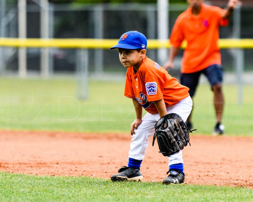BLL-Rookies-Yankees-RedSox-20170412-057.dng  Houston Sports Photographer Dee Zunker