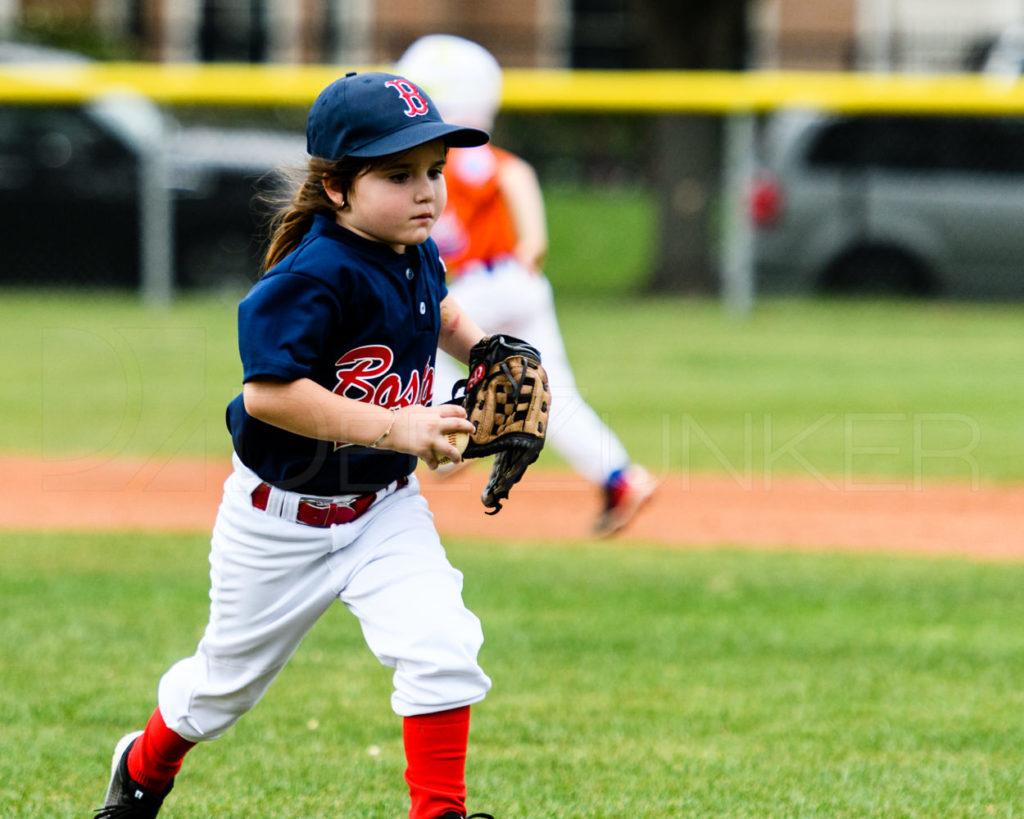 BLL-Rookies-Yankees-RedSox-20170412-086.dng  Houston Sports Photographer Dee Zunker