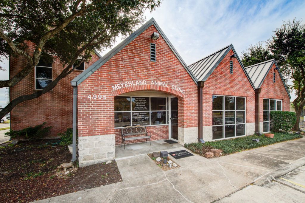 Meyerland Animal Clinic Houston Architecture Photography  POI_MeyerlandAnimal_0002.tif  Houston Commercial Architectural Photographer Dee Zunker