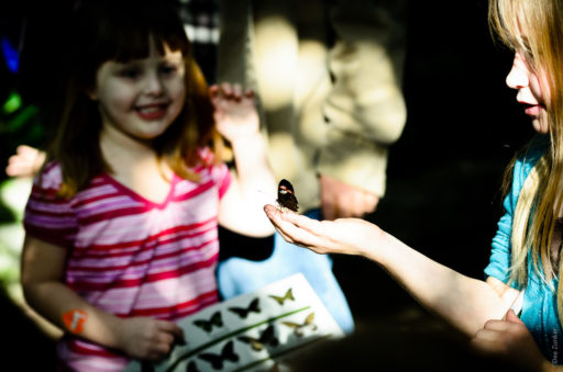 Girls with butterfly in color at Cockrell Butterfly Museum by Houston Commercial Photographer Dee Zunker