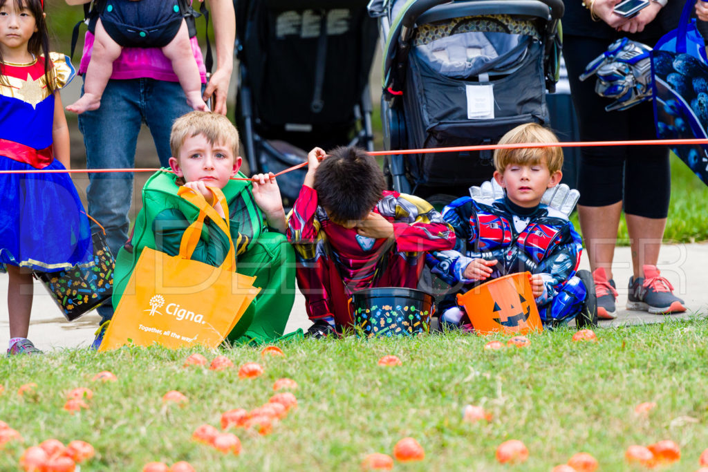 1799-CItyBellaire-PumpkinHunt-2019-030.NEF  Houston Commercial Architectural Photographer Dee Zunker