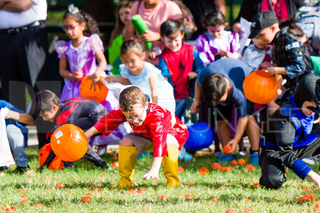 1799-CItyBellaire-PumpkinHunt-2019-051.NEF  Houston Commercial Architectural Photographer Dee Zunker