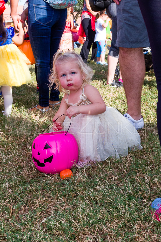 1799-CItyBellaire-PumpkinHunt-2019-068.NEF  Houston Commercial Architectural Photographer Dee Zunker