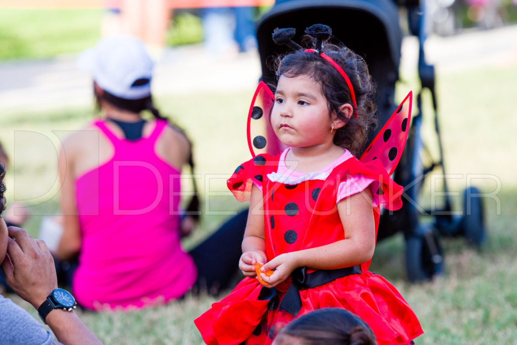 1799-CItyBellaire-PumpkinHunt-2019-094.NEF  Houston Commercial Architectural Photographer Dee Zunker